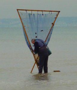"""Pêche au """"Haveneau"""" ou """"Fouine"""""""