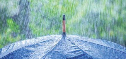 Pluie abondante