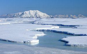 Glace arctique