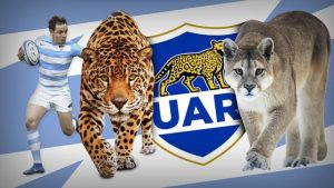 Joueur de rugby argentin, logo de l'UAR (Union Argentina de Rugby) (Union Argentine de Rugby), jaguar et puma