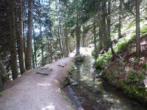 Un rû : canal utilisé, en Vallée d'Aoste (Italie), pour amener l'eau des torrents des vallées latérales aux terrains arides de la vallée centrale.