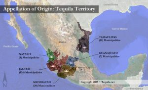 Les cinq zones de production de la tequila