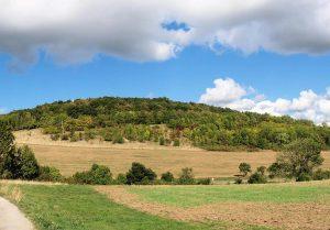 Un coteau (versant d'une colline)