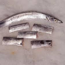"""Tronçons de """"Lépidope"""" également appelé """"Jarretière"""", """"Sabre"""" ou """"Poisson-sabre""""."""
