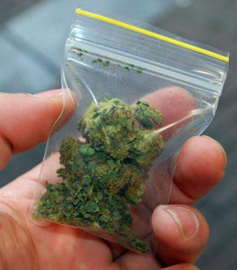 Sachet de cannabis