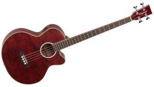 Guitare basse acoustique
