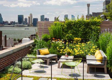 """Toit-terrasse ou toiture terrasse végétalisé (""""Rooftop"""")"""