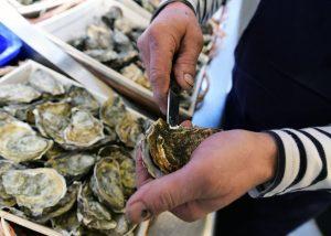 Écailler des huîtres