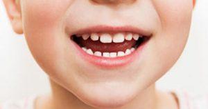 Dents de lait de petit garçon