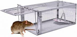 """Une cage piège à souris ou """"Nasse"""""""