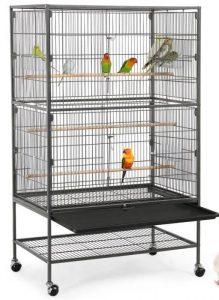 """Une cage à oiseaux ou """"Volière"""""""