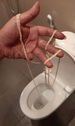 Une main d'homme tenant un ver solitaire de plus de deux mètres