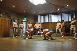Une écurie de sumo