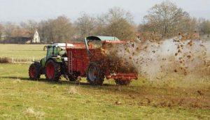 L'épandage mécanique du fumier dans un champ par un tracteur