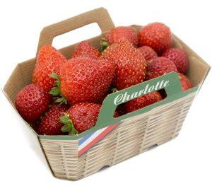 Des fraises Charlotte
