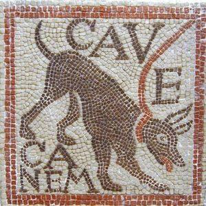 """Une mosaïque romaine retouvée à Florence (Toscane) (Italie) : """"Cave canem"""" (""""Attention au chien"""")"""