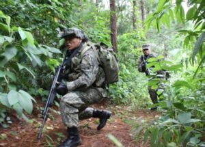 Des guérilleros combattant dans la jungle