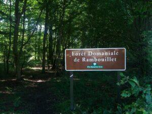 La forêt de Rambouillet (77)