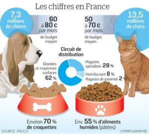 """Le marché des aliments pour animaux domestiques (""""petfood"""") en France"""