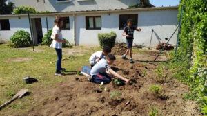 Des enfants en train de jardiner dans le potager d'une MECS (Maison d'Enfants à Caractère Social)