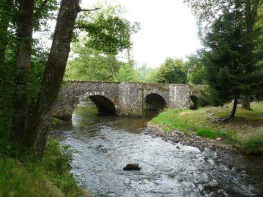 """""""De l'eau a coulé sous les ponts"""" ou """"De l'eau est passé sous les ponts"""""""
