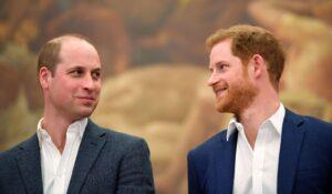 """Le prince William (duc de Cambridge) et son puîné (ou """"cadet""""), le prince Harry (Henry, duc de Sussex)"""